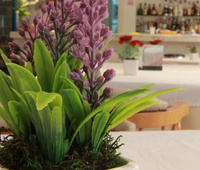 Restaurant Del Mar Hotel & SPA